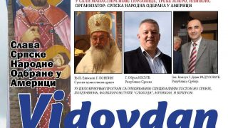 vidovdan_2017a