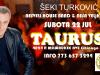 Seki Turkovic