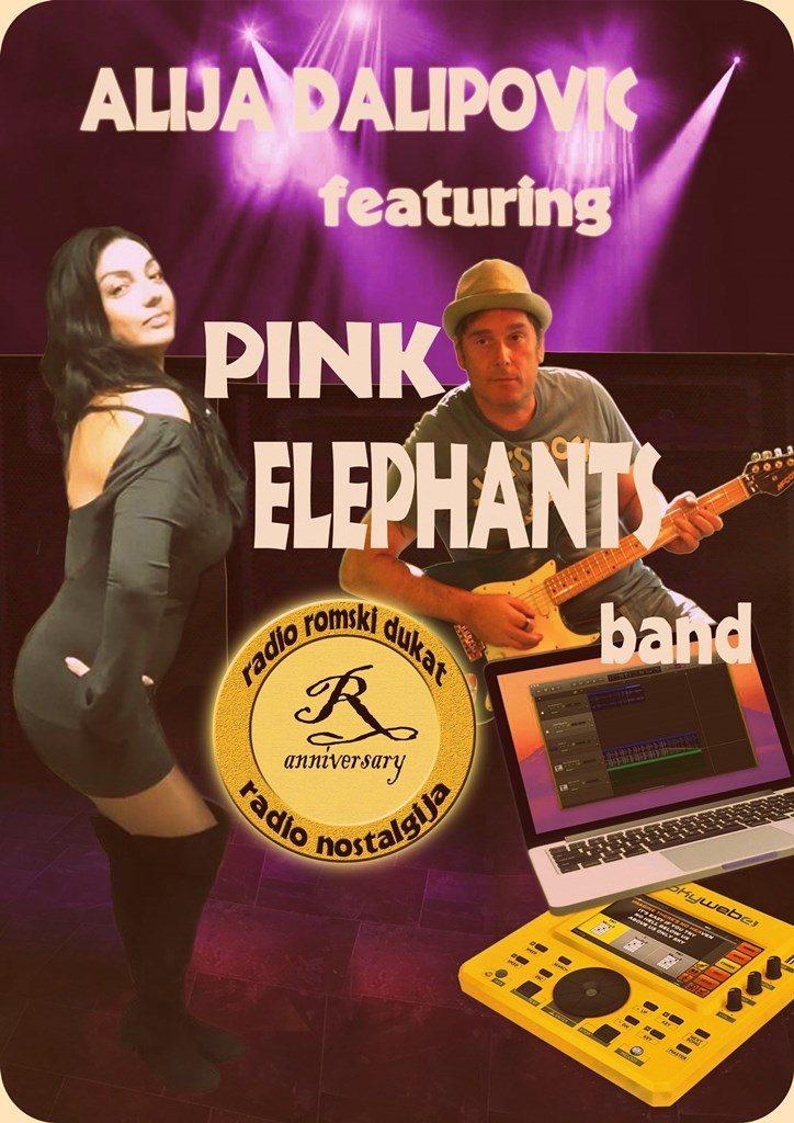 NELA BIJANIĆ I DANKO POPOVIĆ (PINK ELEPHANTS) - USA TOUR @ Skadarliya, Taurus, Župa...